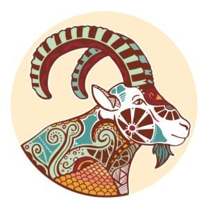 Любовный гороскоп на 2017 год для Козерогов