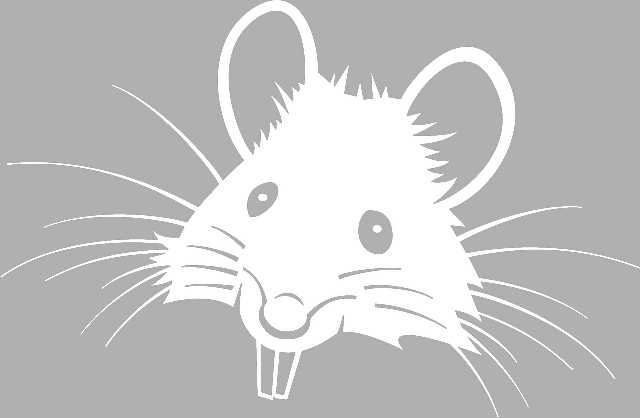 vytynanki-rat-02