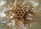 Поделка из макарон снежинка