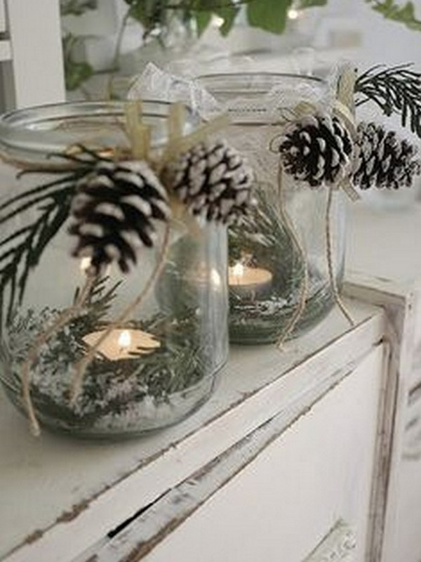pinecone-idea-02