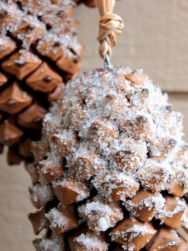 pinecone-idea-29